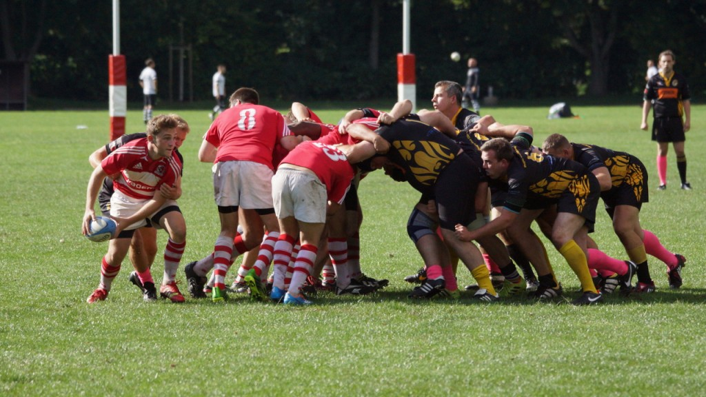 rugby union regeln